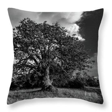 Engellman Oak Palomar Black And White Throw Pillow