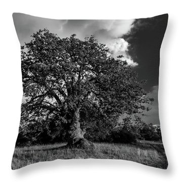 Engellman Oak Palomar Black And White Throw Pillow