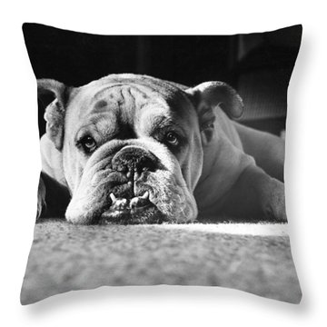 English Bulldog Throw Pillow by M E Browning and Photo Researchers