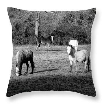 English Horses Throw Pillow
