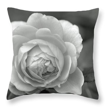 English Rose In Black And White Throw Pillow