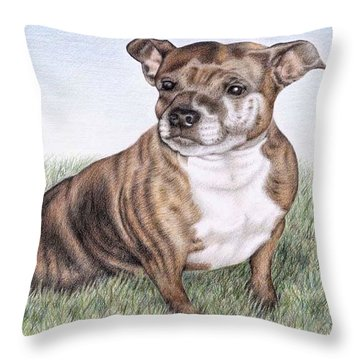 English Staffordshire Terrier Throw Pillow by Nicole Zeug