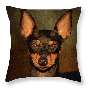 English Toy Terrier Throw Pillow