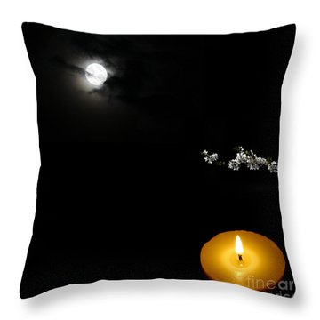 Enigmatic Perspective Throw Pillow