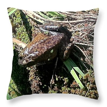 Enjoying Sunshine Throw Pillow