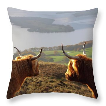 Enjoying The View - Highland Cattle Throw Pillow