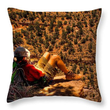 Enjoying The View Throw Pillow by David Patterson