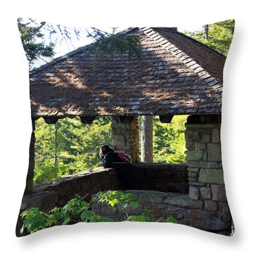 Throw Pillow featuring the photograph Enjoying The View by Greg DeBeck