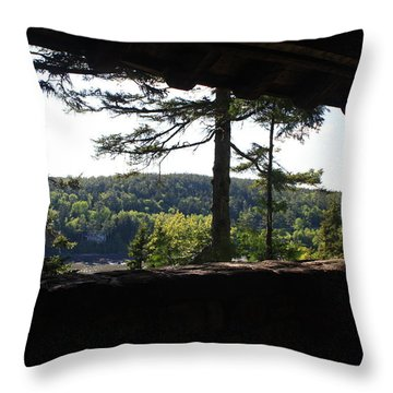 Throw Pillow featuring the photograph Enjoying The View II by Greg DeBeck