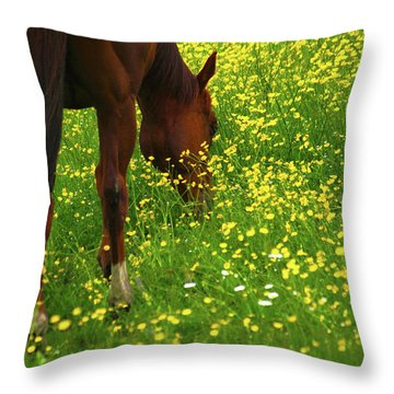 Throw Pillow featuring the photograph Enjoying The Wildflowers by Karol Livote