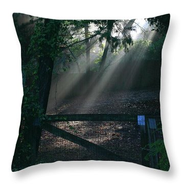 Enlighten Throw Pillow