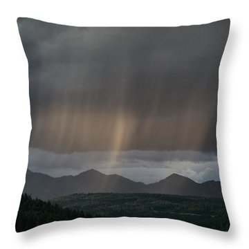 Enlightened Shafts Throw Pillow by Jason Coward