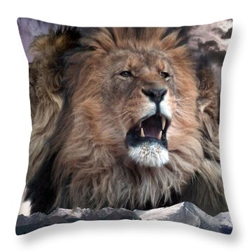 Enough Throw Pillow by Bill Stephens