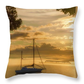 Enriched Dawn Light Throw Pillow