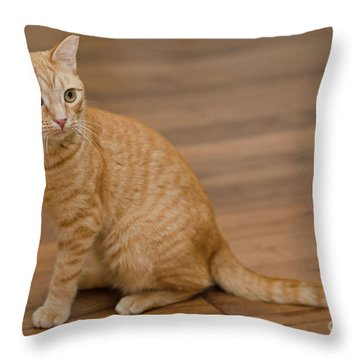 Enrique 1 Throw Pillow
