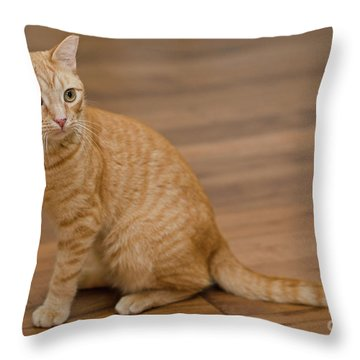 Enrique 1 Throw Pillow