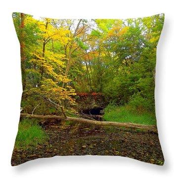 Enter Autumn Throw Pillow