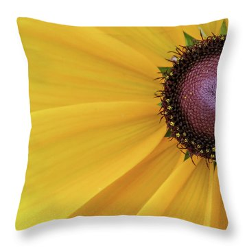 Throw Pillow featuring the photograph Enter Stage Left by David Coblitz