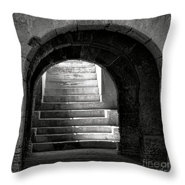 Throw Pillow featuring the photograph Enter The Arena by Olivier Le Queinec