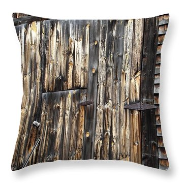 Enter The Barn Throw Pillow
