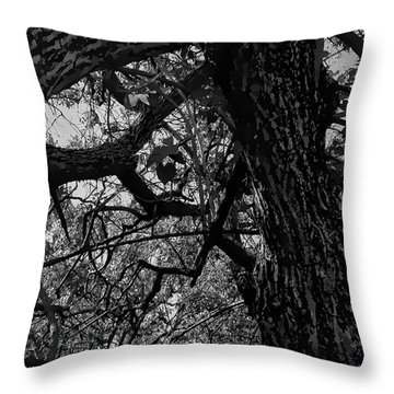 Enter The Woods In Black And White Throw Pillow