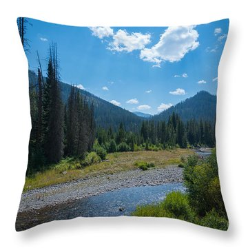 Entering Yellowstone National Park Throw Pillow