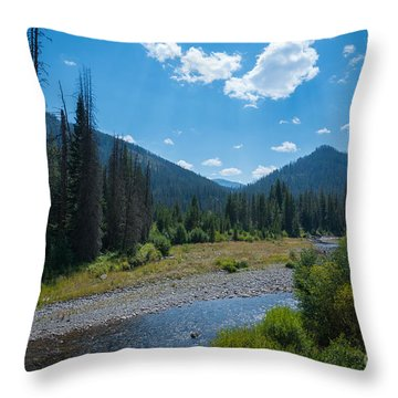 Throw Pillow featuring the photograph Entering Yellowstone National Park by Michael Ver Sprill