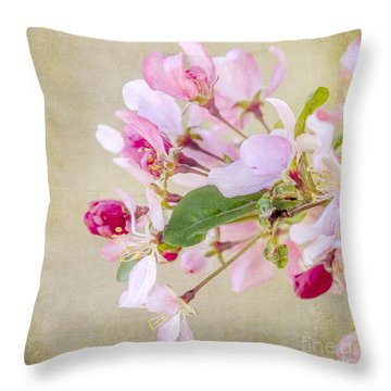 Throw Pillow featuring the photograph Enticement by Betty LaRue