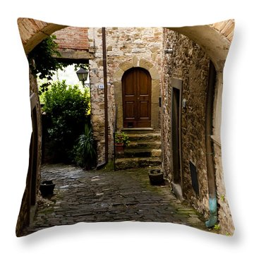 Entrance Throw Pillow by Rae Tucker
