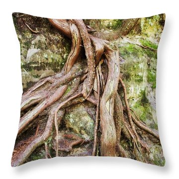 Entwined Throw Pillow by Anna Villarreal Garbis
