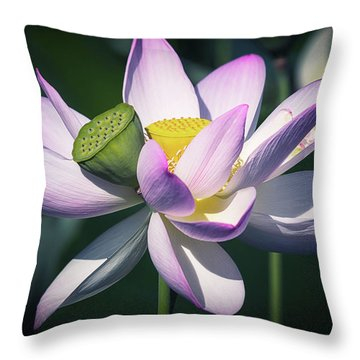 Entwined... Throw Pillow