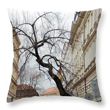Enveloped Throw Pillow