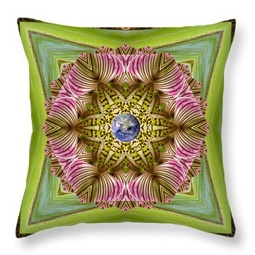Throw Pillow featuring the photograph Epicenter by Bell And Todd