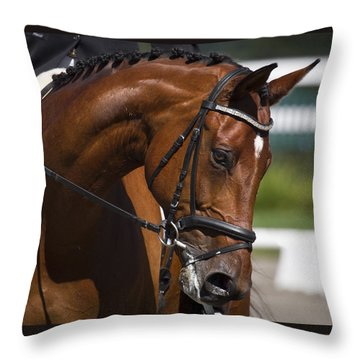 Equestrian At Work Throw Pillow by Wes and Dotty Weber