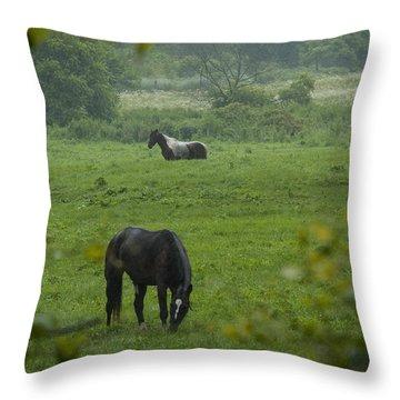 Equine Buddies Throw Pillow