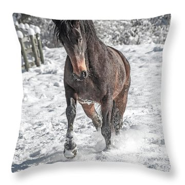 Equine Snowy Frolic  Throw Pillow