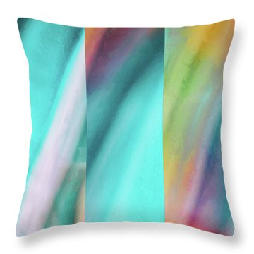 Equipoise 2 Throw Pillow by Tom Druin
