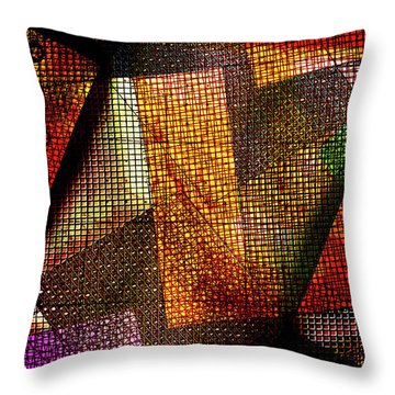Equitable Distribution Throw Pillow by Don Gradner