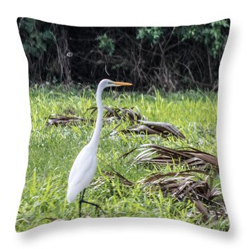 Erget Throw Pillow by Nance Larson