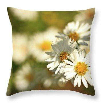 Erigeron Annuus Daisy Like Wildflower Throw Pillow