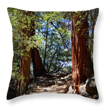 Throw Pillow featuring the photograph Ernie Maxwell Scenic Trail - Idyllwild by Glenn McCarthy