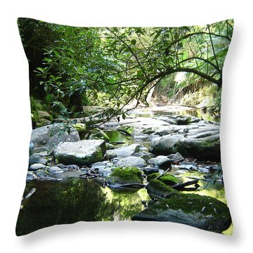 Erskine River Throw Pillow