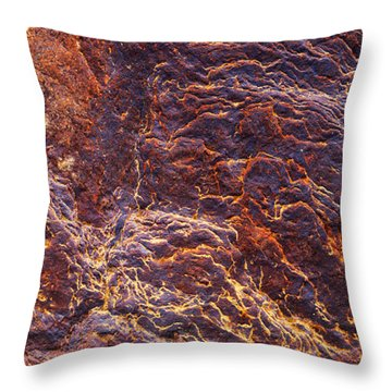 Deposits Throw Pillows