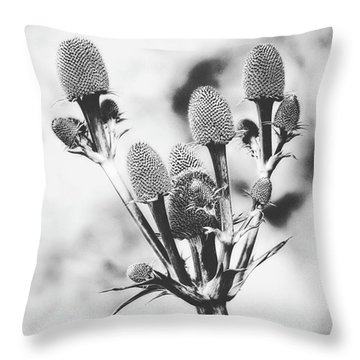 Eryngium #flower #flowers Throw Pillow