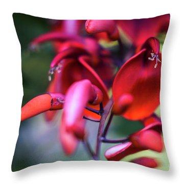 Throw Pillow featuring the photograph Erythrina Crista Galli Flower Spain Square Cadiz Spain by Pablo Avanzini