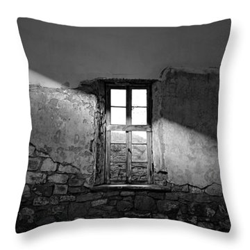 Esp Light Throw Pillow