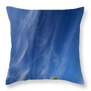 Essence Of One      Throw Pillow