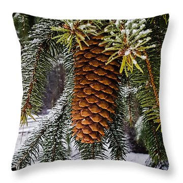 Essence Of Winter  Throw Pillow by Bruce Carpenter