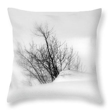 Throw Pillow featuring the photograph Essence Of Winter by Elfriede Fulda