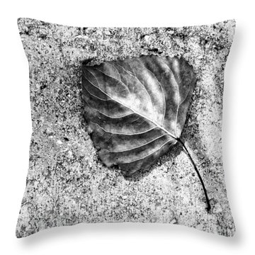 Essential ...black And White Throw Pillow by Tom Druin